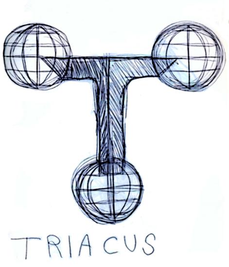 Triacus